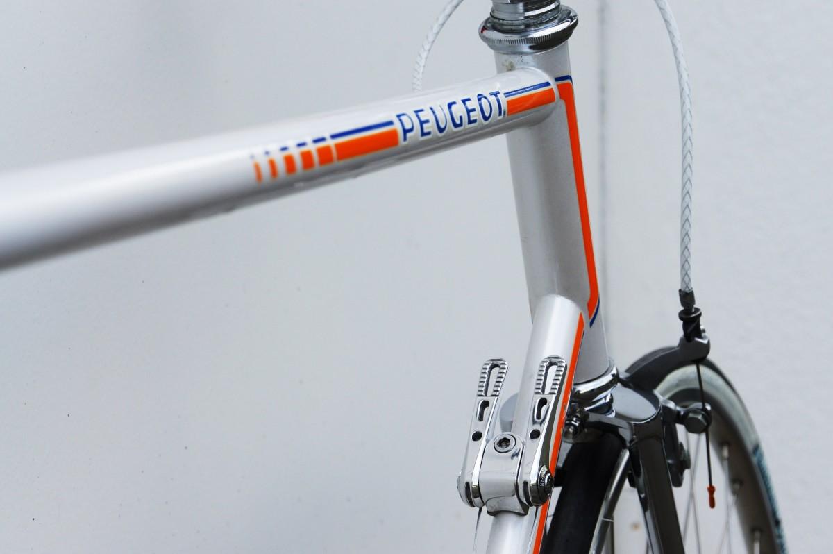 Daccordi Cicli dal 1937 il meglio dei telai artigianali